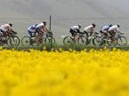 2012环青海湖国际公路自行车赛